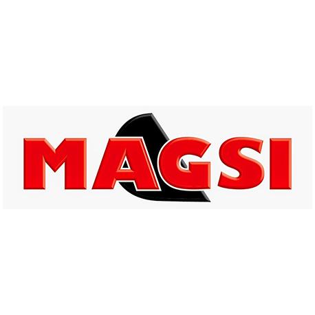 MAGSI
